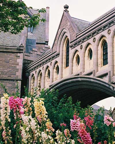 Ireland Escorted Tour - Christ Church Bridge, Dublin
